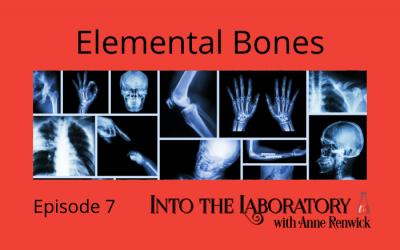 Elemental Bones